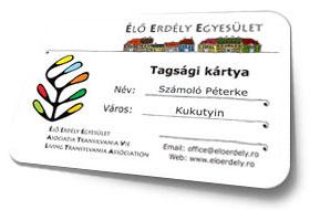 Tagsagi Kartya